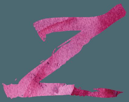 Descubre los exquisitos vinos de Zintzo