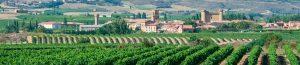 El vino en la comarca de Rioja Alavesa