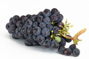 despalillado de la uva